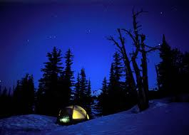 Tent Surrounded by the Sounds of Night
